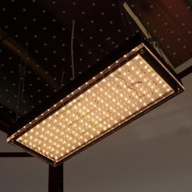 Светильники фитолампы RGW с фиолетовым свечением