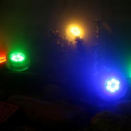 PIN AQUA яркий светильник для альпийских горок и водопадов