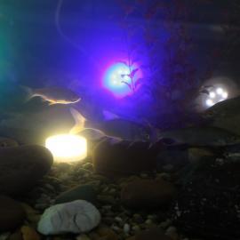 PIN AQUA светодиодный R,G,B светильник для водоёма