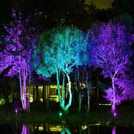 JUPITER - Антивандальный парковый светильник для освещения деревьев и других крупных объектов