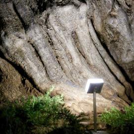 Светильники TRIF - модель CUBE UP - подсветка крон деревьев