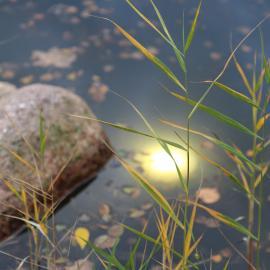 TRIF NAUTILUS NT Светодиодные светильники для подсветки прудов