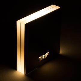 Настенные LEDсветильники TRIF QUADRO